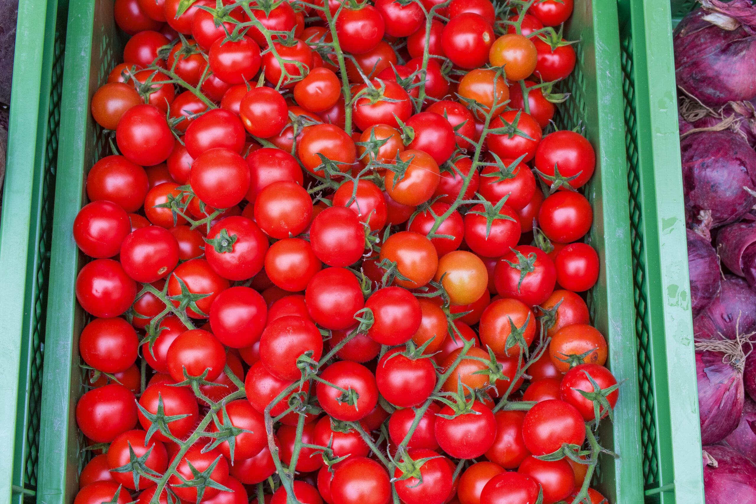 Isener Bauernmarkt Angebotsübersicht Bio-Gemüse